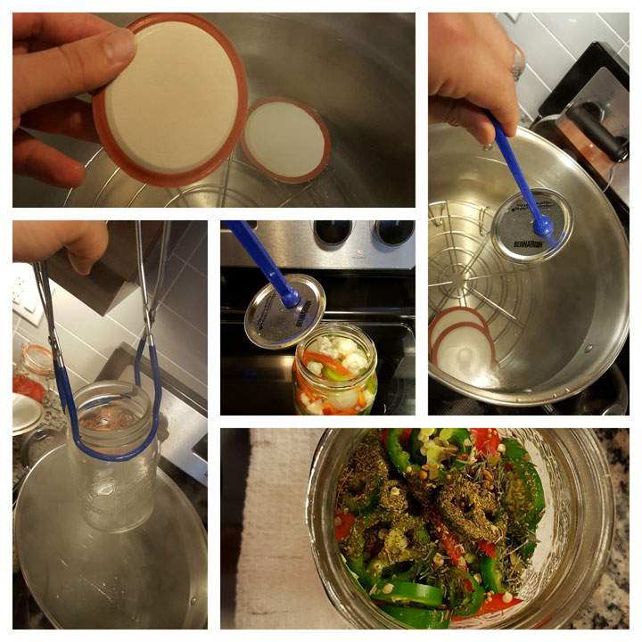 collage of pickling process